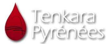 Logo Tenkara Pyrénées.jpg