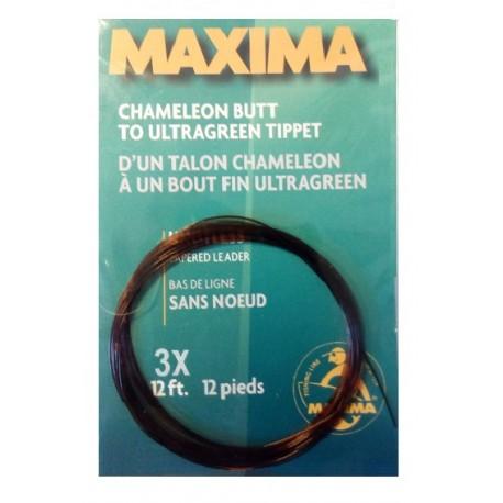 Bas de ligne sans noeud Maxima